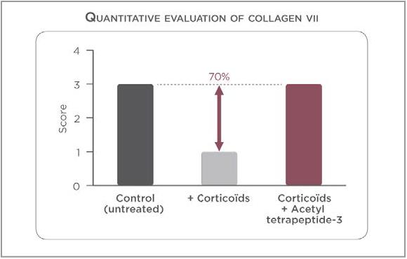 コラーゲン7型染色の半定量的評価