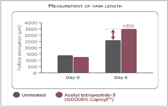 人の毛包に作用する『アセチルテトラペプチド-3』の効果