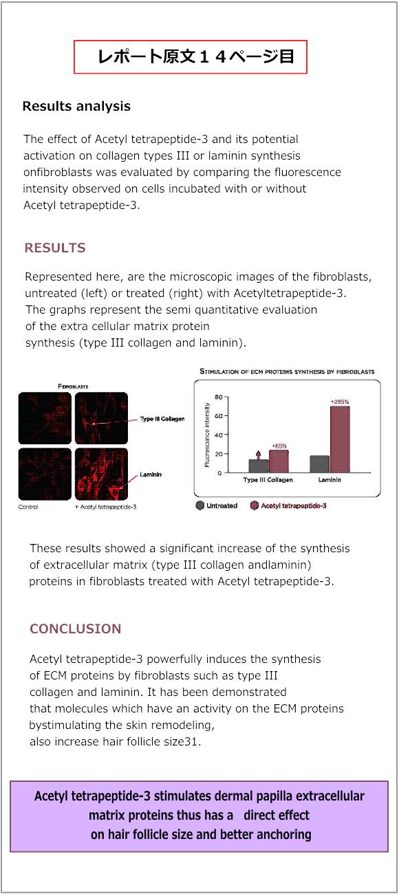 ルーカスマイヤー臨床レポート14ページ目