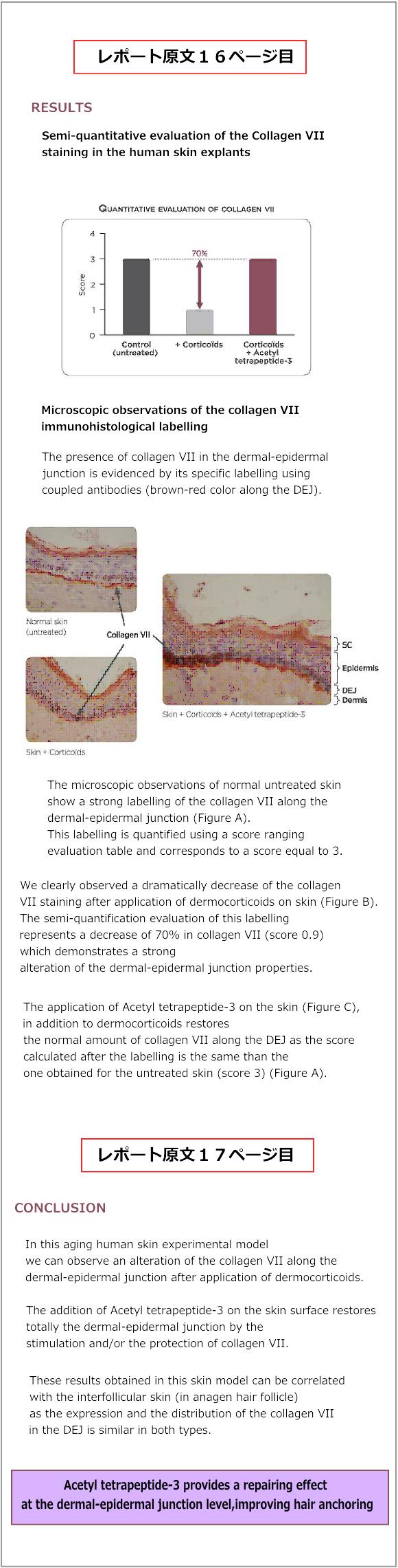 ルーカスマイヤー臨床レポート16,17ページ目