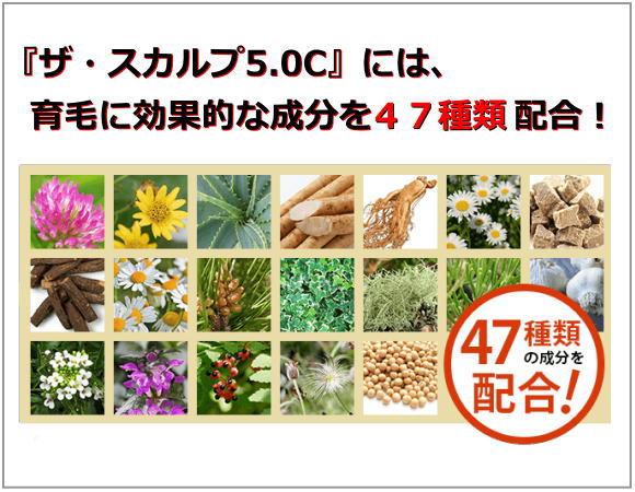 ザ・スカルプ5.0Cは育毛に有効な成分を47種類配合